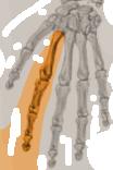Effector Node Icon